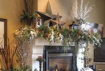Fireplace Ideas / by Jamie Gussner