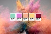 Design > colors