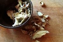 Herbs / by Kristine Roy