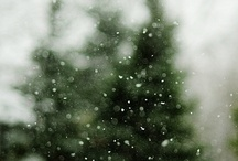 Winter / by Kristine Roy