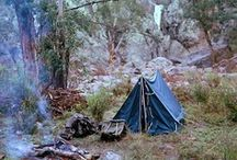 Camping / by Kristine Roy