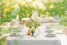 Garden Party / From Chic to Rustic appearance for a social event, we have all the fabrics and accessories to make it a memorable day.
