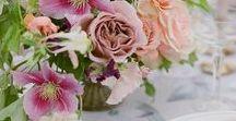 Colour Palette. Pinks + Peaches. LOVELYNESS. (NEW) / #pink #peach #weddingdecor #weddingcolours #wedding #colourpalette #weddinginspiration #weddingideas #weddingstyle #weddingstyling #bridetobe