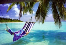 TRAVEL ~ Wanderlust / Places I need to visit ! / by Shelia Little ~ Sweet Southern Blue
