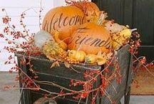 Interiors - Decor: Harvest & Fall / #halloween