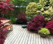 Outdoors - Deck, Patio & Terrace Ideas / #deck