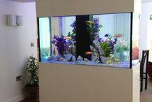 Interiors - Aquarium & Terrarium Ideas