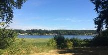 Land in Yelm for Sale / Land and Acreage for sale in Yelm Washington