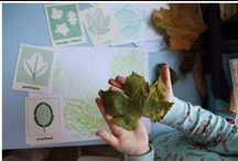 Learning: Fall Homeschooling Activities / Autumn themed homeschooling activities