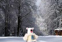 Faits d'hiver / Animaux Janod et paysages d'hiver.