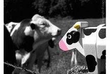 Vacances à la campagne / Jouets Janod en pleine nature ou jouets liés au thème de la campagne ... ferme, vaches, cochons pour enfants.