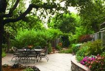 garden design / patio design, trees, paths, beds, plants, flowers, garden furniture, bird feeders...
