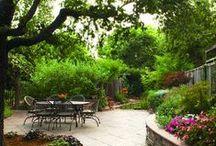 garden design / patio design, trees, paths, beds, plants, flowers, garden furniture, bird feeders...