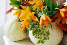 Best Thanksgiving Ever / by Christine Arfsten