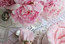 In The Pink / by Mary English