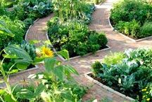 kitchen garden / vegetables, growing tips, raised beds, greenhouses, watering systems, solar heating...