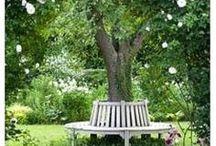 Zahrada - Garden
