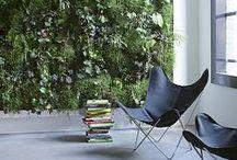 Green Walls + Vertical Gardens