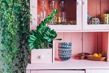 Coral / by west elm