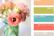 Create: With Colors / by Amy L0uAldaMay
