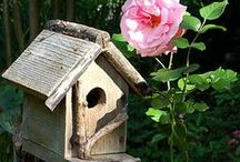 Bird Houses❤ / I LOVE rustic bird houses. I hope you enjoy my collection. Thank you to all the creative people out there who made such beautiful homes for our feathered friends. / by Jenny Skinner