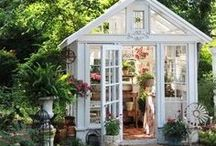 Garden Sheds & Houses / potting sheds & green houses / by Vintage Butterfly