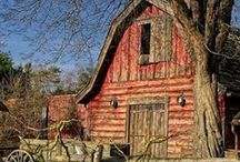 Beautiful Barns ➤ Aussie Sheds / by Jenny Skinner