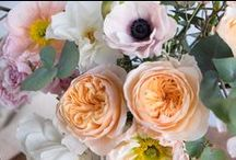 Flowers / Swoon-worthy flowers and flower arranging inspiration. / by west elm