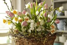 Easter Decorations / by Denise Carter