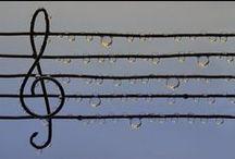 all about music ♫ / by Julia Mukuddem