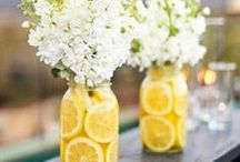 P A R T Y / Decor and parties