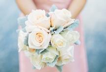 Wedding / by Lauren Masten