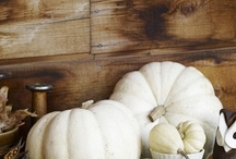 Halloween Old School / Fall too! / Such fun to decorate for fall and Halloween. If there is a chill in the air even better. Fall brings on the Holidays and gives us a reason to clean and change the furniture and decor around! / by Gwenandchuck Milledge