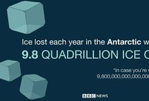 BBC Go Figure / Daily infographics / by BBC News