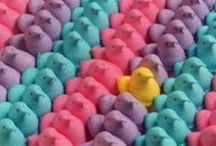 Hangin' with my Peeps / by Caitlin M