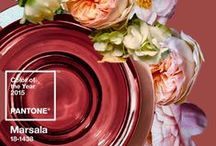 Marsala: 2015 Pantone Color of the Year / Try and incorporate this deep and rich red-brown hue into your home next year! / by Sabal Homes