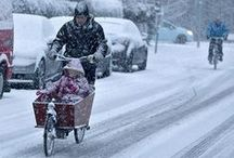 Winter Cycling / You know you're a die-hard if you cycle in weather like the example below! Winter cycling at its finest.