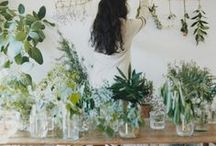 Herbs ♥ Oils and Nifty Stuff / by ☮ Bohemian ♥ Starlet ✌