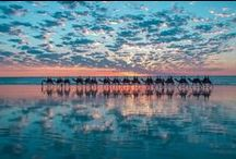 travel - australia / new zealand / antarctica
