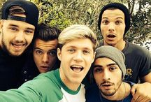 1D / by Kate Mitchell