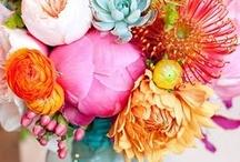 Floral / by Jenny Allen