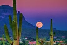 Arizona Living / Local events, hot spots to see, things to do and places to visit.