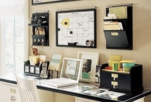 Organization/Organisation