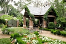 Yard & Garden / by Jenn Barnes