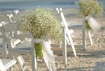 Beach wedding / by Lisa Burke