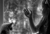 Rain / I Love the Rain!!!! / by Lori Stilkey
