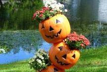 Halloween Decorating / by Lori Stilkey