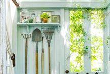 Garden / Garden, pools, trees, greenhouses