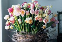 Zuhause  | Frühlingsblumen & Bouquets / Was gibt es Schöneres im Frühjahr, als sich einen wunderschönen Blumenstrauß ins Haus zu holen. Lass dich inspirieren!