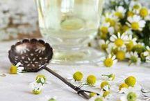 Gesundheit | Heilkräuter aus dem Garten / Viele Kräuter, die uns wohltuen, kannst du gut im eigenen Garten kultivieren. Hier findest du Tipps und eine Auswahl meiner Lieblingskräuter